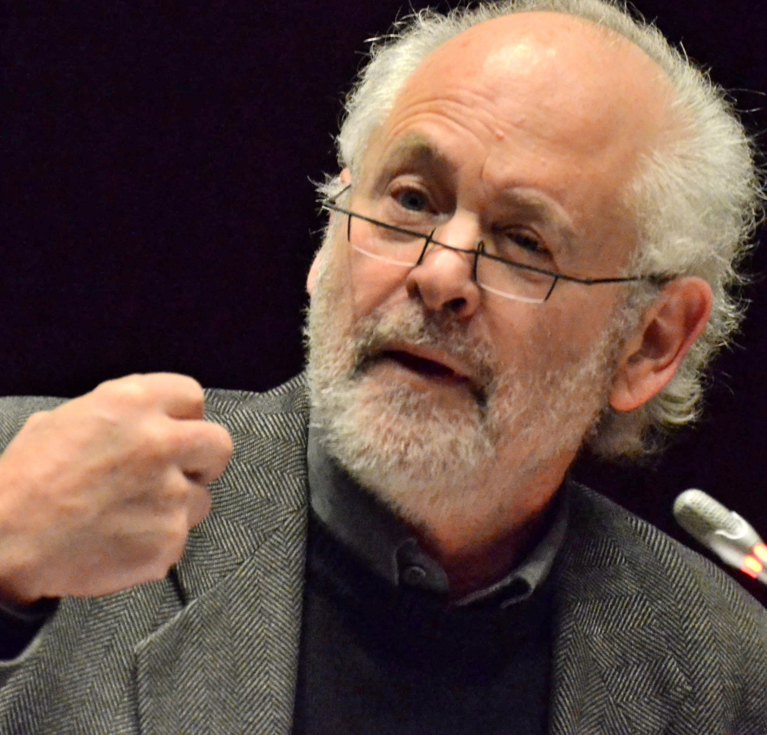 Raymond Suttner